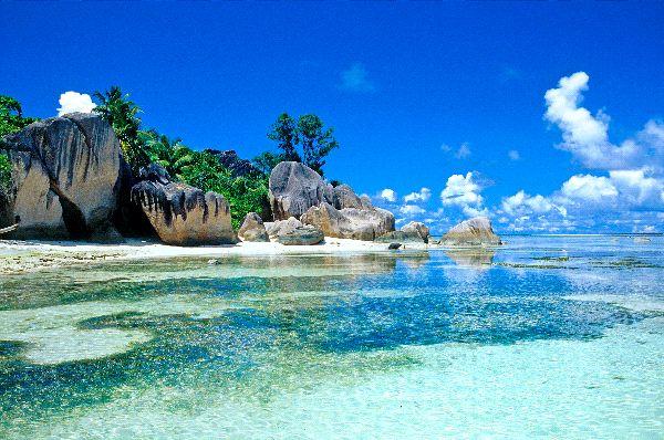 Ocean Biome Landscape