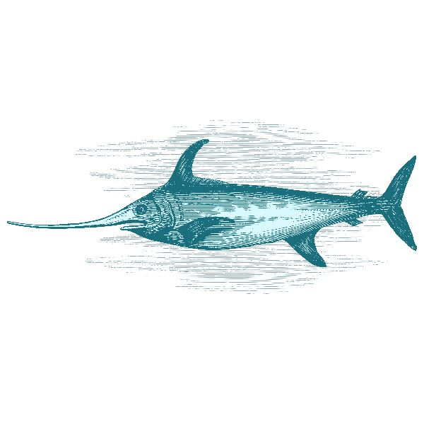 Swordfish Facts and Information